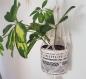 Suspension pot à fleur macrame
