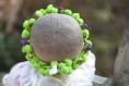 Couronne de fleurs cheveux pour baptême