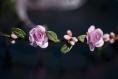 Couronne de fleurs shabby chic