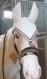 Bonnets chevaux delux ou grande taille, au crochet