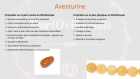 Bracelet en perles naturelles 6 mm : aventurine orange
