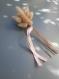 Bouquets lagurus fleurs séchées et noeuf de ruban en satin, mariage champêtre, bohème-chic
