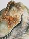 Dinnosaure - affiche a4 - t-rex