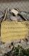 Petit sac vintage moutarde au crochet