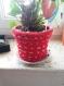 Cache pot pour les plantes diam 15