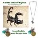 Ras de cou malachite attribué au signe du scorpion réf.18778