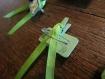 Broches lyme tique et ruban vert