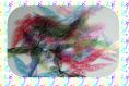 1x ailes transparente