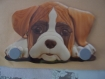 Accroche laisse chien boxer