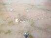 Collier argent et pendent perle d'eau douce blanche coupole,fin,minimaliste,925,épuré,sobre,classique,chic,freshwater pearl,natural necklace