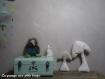 Coussin duo champignon à croquer !