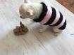 Vetement petit chien laine rose et noir dos 20 cm chihuahua,yorshire ...tricopascou