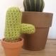 Cactus allongé/ décoration d'intérieur