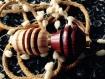 Atomiseur pour parfum en bois de citronnier de ceylan et padouk