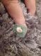 Bague réglable avec pierre verte et coquillage oeil de st lucie