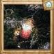 Guirlande lumineuse inspirée d'harry potter aux couleurs de la maison de poudlard : gryffondor