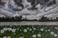 Au bord de l'étang (tableau peinture acrylique)