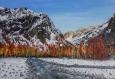 Ecrin d'automne (tableau peinture acrylique)