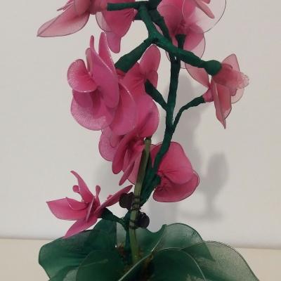 Orchidées roses nylon sur tige et feuilles
