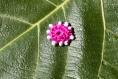 Motif fushia rond au crochet à coudre, patch, écusson, applique - mmp16