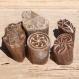 Lot de 5 tampons batiks indiens en bois sculpté à la main, pochoir - btm7
