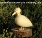 Canard en bois