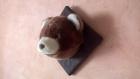 Trophée ours brun en peluche