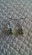 B834-  boucles d'oreilles en métal argenté avec une perle céramique verte