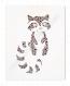 Affiche - illustration raton laveur