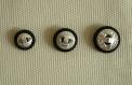 Plaquette de huit boutons recouverts plaq 43