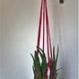 Suspension pour fleur ou plante verte en trapilho