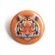 4 magnets animaux 56 mm lion tigre gorille panda graphique coloré rose bleu orange