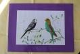 Set de table couple de perruches ondulées bord violet