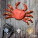 Projet diy papercraft: crabe