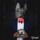 Projet diy papercraft: masque de bouledogue français