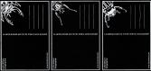 Cartes postales insectes x3