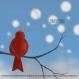 Affiche «zouik» illustrée d'un rouge-gorge sur une branche sous les flocons dans le ciel bleu