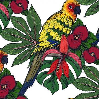Set de table design original et moderne. esthétique, lavable et résistant - plantes tropicales et oiseaux exotiques. perroquets posés sur leurs branches.