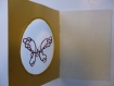 Carte papillon dentelle