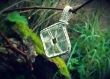 Collier pendentif donut carré cristal de roche naturel - pièce unique.