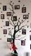 Wall sticker arbre généalogique des photos 9x13cm (3397n)