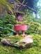 Jardin nomade : sur mes six doigts