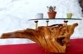 Table basse racine