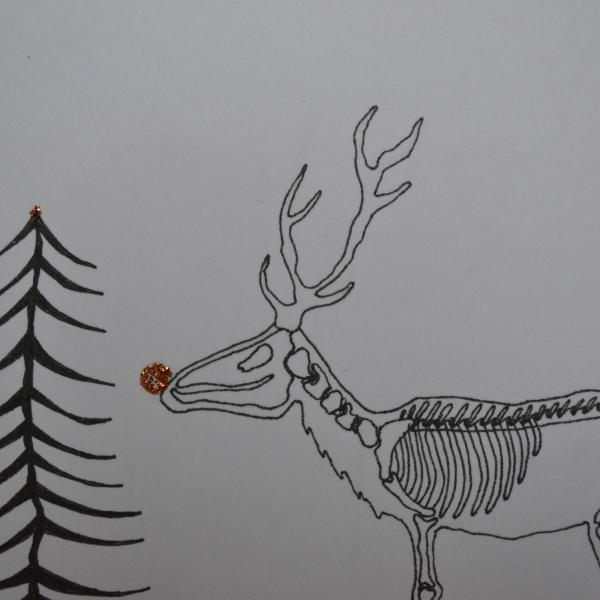 Carte Cerf Squelette Noir Et Blanc Inspiration L Etrange