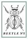 Poster scarabée, insecte pour décoration tropicale