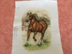 Broderie le cheval