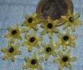 Lot de cabochons fleur  creation maison resine