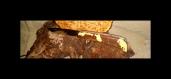 Couteau pliant en bois de fer (olneya tesota)