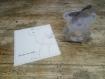 Boite à dragées ourson gris boule plexi ( baptême, naissance, anniversaire)