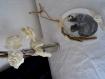 Cadre photo ovale roses, bois flotté et dentelles